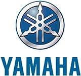 Yamaha XJR1300(L) service and repair Shop Manual