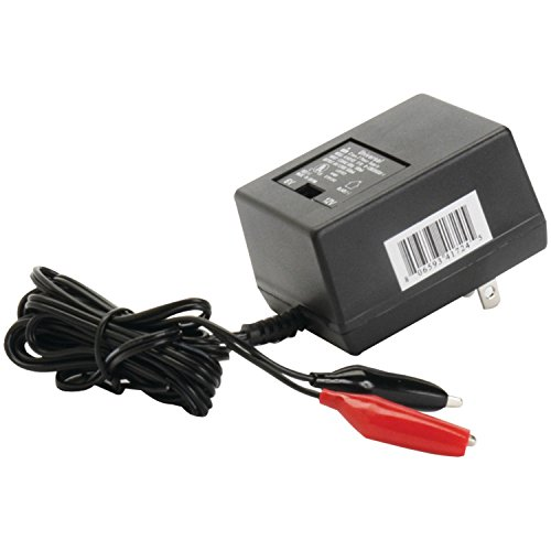 (Sealed Lead Acid Battery Charger UPG D1724)