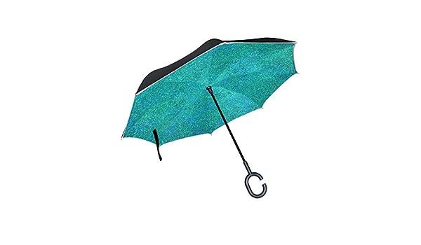 PINLLG Paraguas Abstracto Turquesa Invertido Doble Capa Paraguas ...