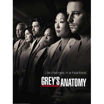 Amazon.com: 25x14 Inch Greys Anatomy Season 10 Silk Poster 3GS7 ...