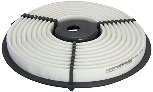 Coopersfiaam Filters FL6910 Air Filter: