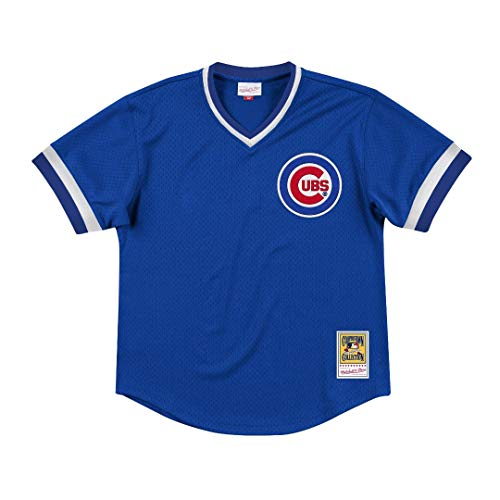 Mitchell & Ness Andre Dawson Chicago Cubs Men's Authentic 1987 BP Jersey (X-Large)