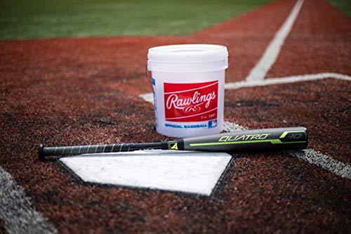 Rawlings 2019 Quatro Pro USA Youth Baseball Bat (-10), 30 inch / 20 oz