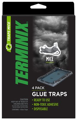 term4pk-mouse-glue-trap