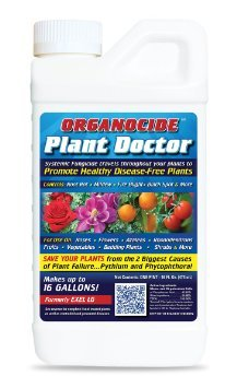 PlantDoc Systemic Fungicide Pt