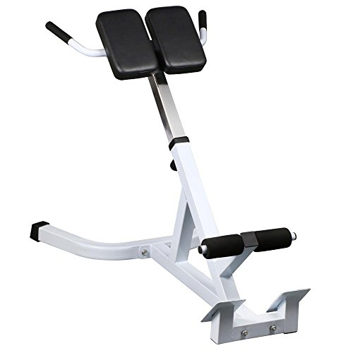Yaheetech 45 Degree Hyperextension Roman Chair Back Exercise Bench Gym Abdominal  sc 1 st  Martial Arts Shoes & Yaheetech 45 Degree Hyperextension Roman Chair Back Exercise Bench ...