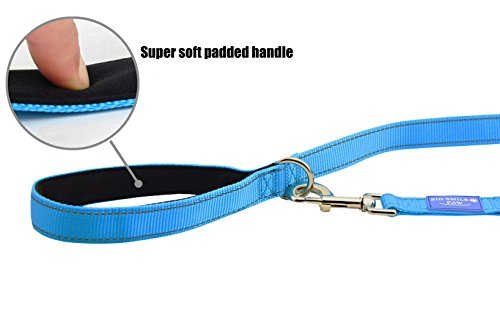 Picture of BIG SMILE PAW 8' Dog Leash Reflective,Traffic Padded Handle (Blue)