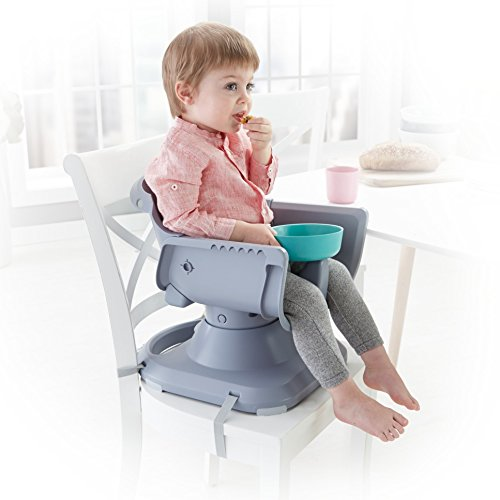 Fisher-Price SpaceSaver High Chair by Fisher-Price (Image #5)
