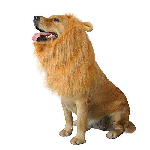 Lion Mane Dog Costumes Dog Wig Lion Hair Halloween Cosplay With Ears and Tail For Mediun And Large Pets Golden Retriever (Lion Dog Costume Animal Planet)