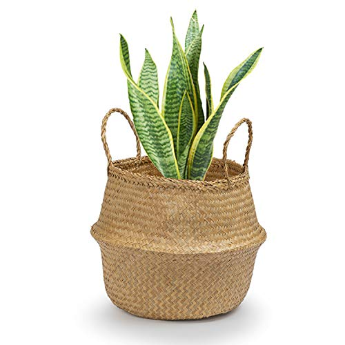 Seagrass Round Basket with Handles, Decorative Woven Basket, Plant Holder, Picnic Basket or Indoor Storage for Blankets, Toys or Laundry, by Toma Design (Natural, Medium) ()