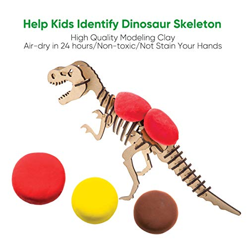 ROBUD Build Dinosaur Figure with Modeling Clay-Dinosaur Toy