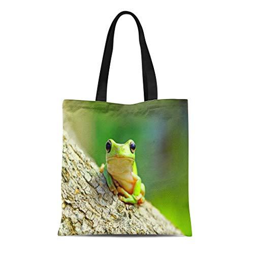 Semtomn Canvas Tote Bag Shoulder Bags Amphibious Colorful Adorable Dumpy Frog Tree Green Amphibian Animal Women's Handle Shoulder Tote Shopper Handbag ()