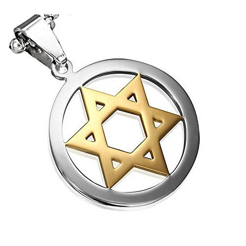 - My Daily Styles Stainless Steel Two-Tone Jewish Star of David Charm Pendant Necklace, 24