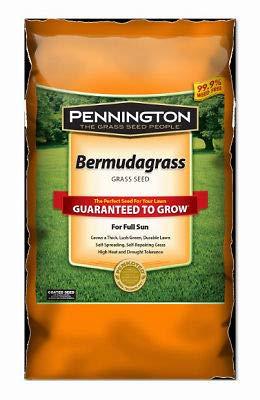 Pennington Seed 1 lb Bermuda Grass - Bermuda Seed Lawn