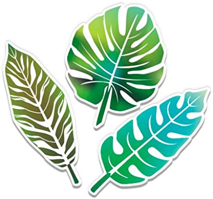 Amazon Com Gt Graphics Tropical Leaves Vinyl Sticker Waterproof Decal Clothing We print the highest quality tropical leaves stickers on the internet. gt graphics tropical leaves vinyl sticker waterproof decal