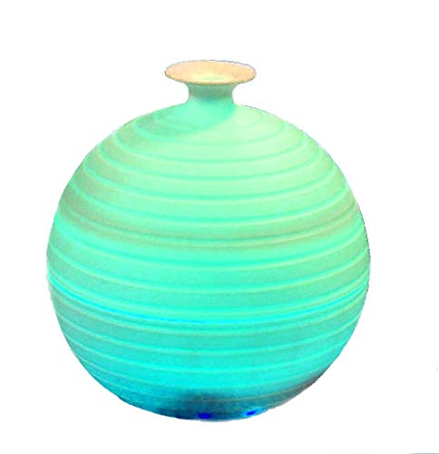 Vista 300ml Aroma Essential Oil Diffuser Ultrasonic Humidifier LED 7 Color Changing Ionizer