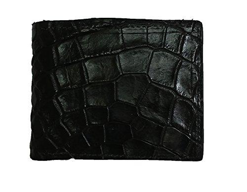 Alligator Skin - 6