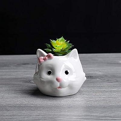 T-14898 Tritow Maceta de cerámica Plantas suculentas Lindo Gato Forma de Oveja Maceta Maceta decoración para el hogar macetas jardín macetas (tamaño : Cat): Amazon.es: Hogar