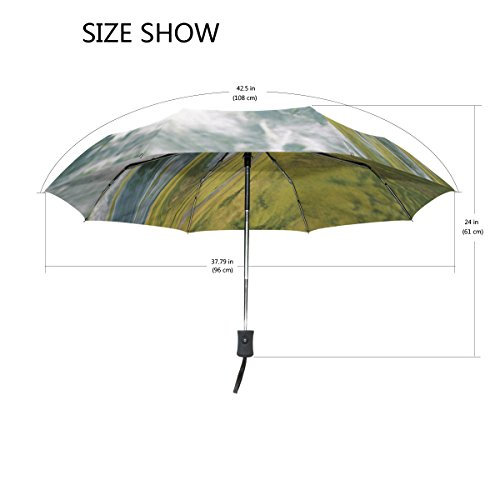 Full Automatic Portable Folding Rainy Umbrella Women Men Windproof Umbrella Printing Parapluie Paraguas