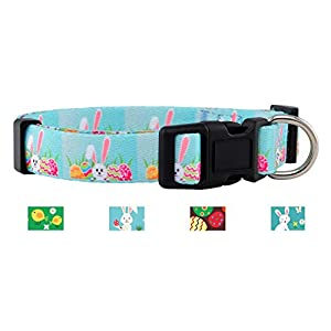 Native Pup Easter Dog Collar