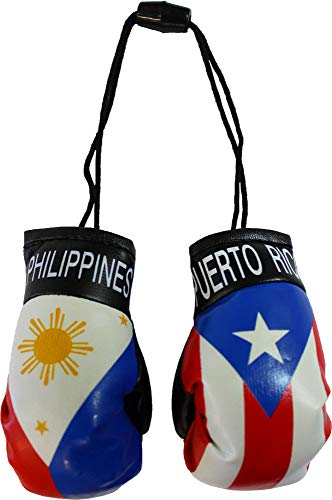 Philippines and Puerto Rico Mini Boxing Gloves