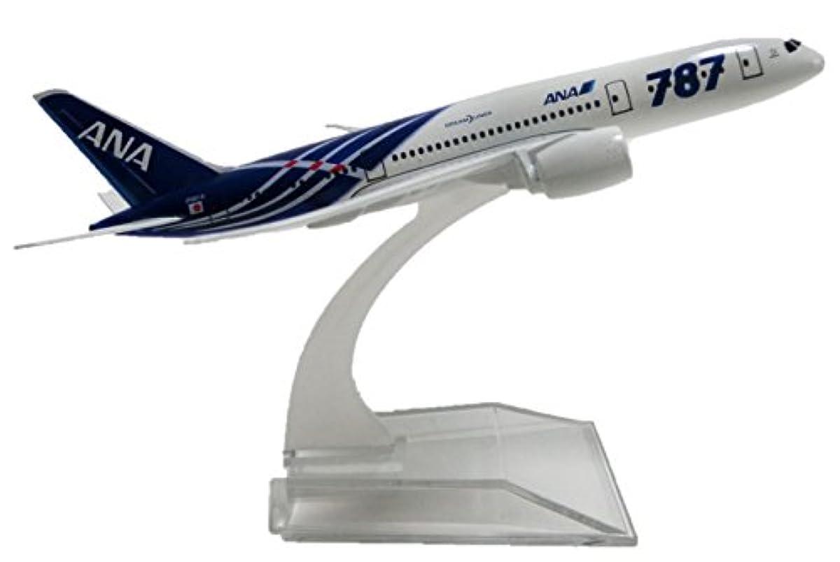 [해외] KIUMI 전일본항공 ANA 보잉 787 B787-8 합성피혁금제 모형 완성품 비행기 플레인 장난감 1/400 일본항공 에어버스 여객기