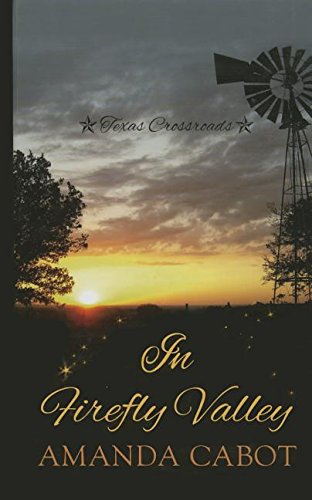 book cover of In Firefly Valley