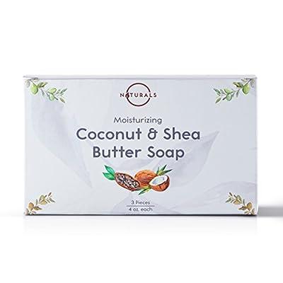 Coconut Soap + Dry Brush Set
