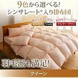 9色から選べる シンサレート入り掛け布団 クイーンサイズ (色:シルバーアッシュ) tu-38751  寝具専用シンサレート™を使用 掛布団