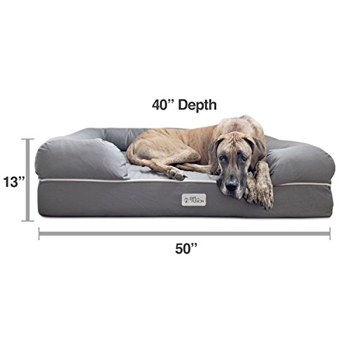 "PetFusion Jumbo Dog Bed w/Solid 6"" Memory Foam, Waterproof Liner, YKK Premium Zippers. [Gray, Ultimate Lounge 50x40x13 - Sized for XXL Dogs"
