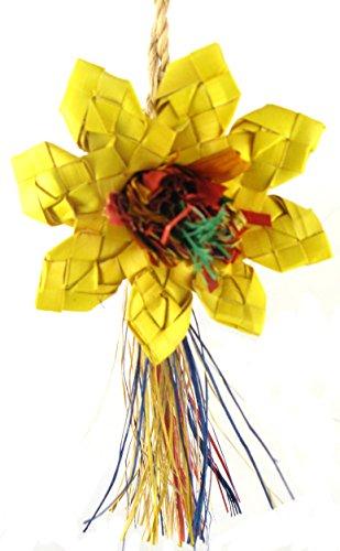 Prevue Bird Chew Toy - Planet Pleasures Sunflower Bird Toy, Medium