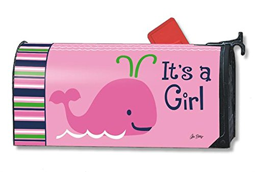 Studio M Mailbox Cover - It's a Girl Gender Reveal/ Birth Announcement
