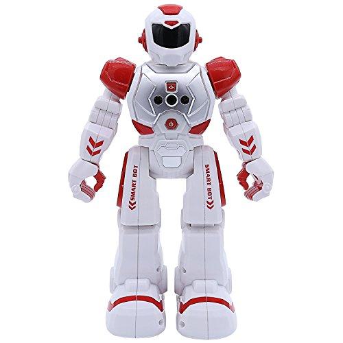 Remote Control RC Robot, ECLEAR Programming Gesture Sensing Interactive  Robotics Humanoid Robots Kit Toys Present for Kids Preschooler  Entertainment,