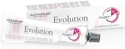 Alfaparf Evolution Of The Color Fast 10 - Tinte permanente ...