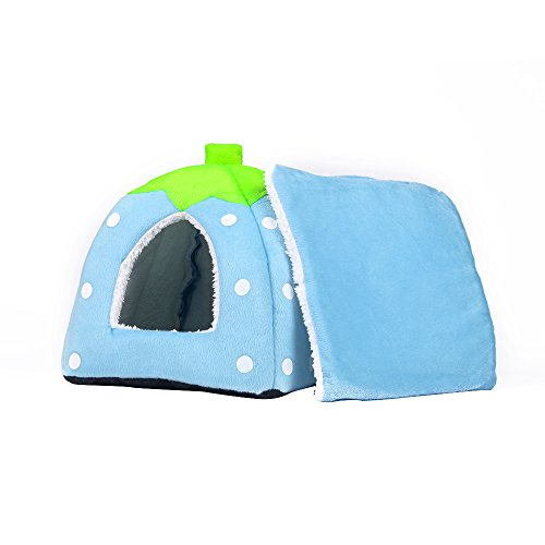 Spring Fever Strawberry Guinea Pigs Fleece House Rabbit Cat Pet Small Animal Bed Blue L (16.916.90.8 inch) by Spring Fever (Image #2)