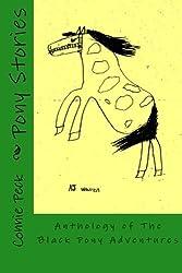 Pony Stories: Anthology of The Black Pony Adventures