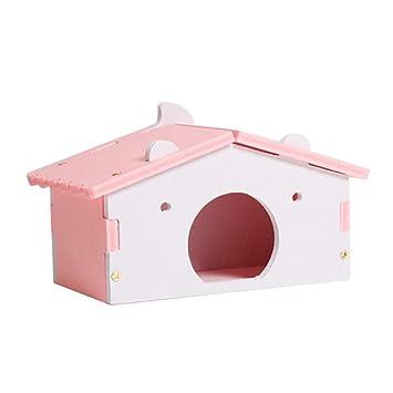 Tiansiangjjeu Casa de hámster para Mascotas pequeñas, Ratones ...