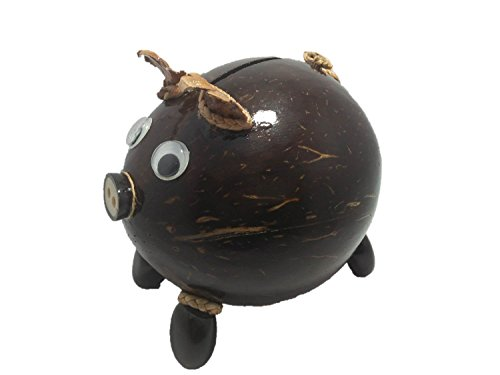 TripleK piggy bank for kids with coconut accessories Mad of natural Amazing Handmade Thailand. (Furniture Royal Vegas Las)