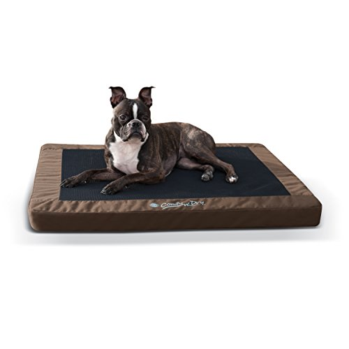 K H Manufacturing Comfy N Dry Indoor Outdoor Pet Bed   Waterproof Outdoor Pet Bed Available In Multiple Sizes   Colors   Orthopedic Style Support   Great For Aging Pets   Medium 28  X 36   Chocolate