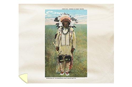 Lantern Press South Dakota - Sioux Indian Iron Hail, Wounded Knee Survivor 15735 (88x104 King Microfiber Duvet - Indian Sioux Pottery