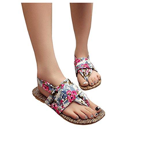 Sandales Dété, Inkach Femmes Sandales Dété Peep-toe Chaussures Basses Dames Roman Flip Flops Bleu