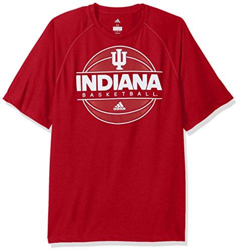 - adidas NCAA Indiana Hoosiers Mens 2017 On Court Climalite S/Tee2017 On Court Climalite S/Tee, Victory Red, X-Large