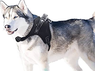 Dog Harness Large Breed with Handle No Pull Padded by BINGPET