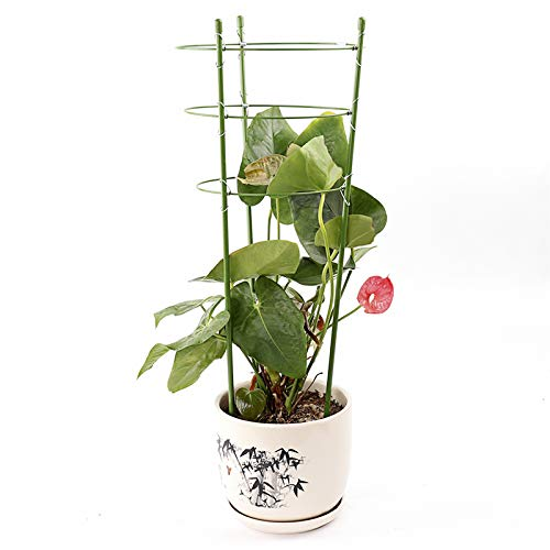 Wenyun Garden Plant Support Ring, Garden Trellis for Potted Climbing Plants Supportwith 3 Adjustable Rings for Home Garden Balcony