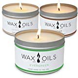 Wax and Oils Soy Wax Aromatherapy Scented Candles (Cedar, Evergreen, Sandalwood) 8 Ounces. 3 Pack