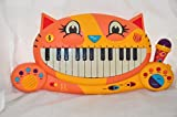 : Kitty Keyboard Musical Piano Recorder Toy Parents Magazine
