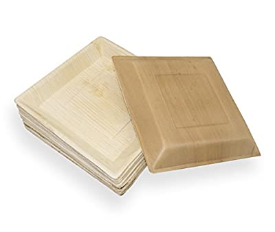 Daily Home Essentials - Areca Palm Leaf Plates Disposable Natural Compostable Eco Friendly Dinnerware