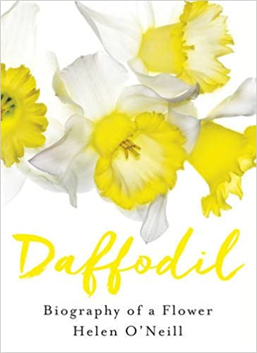 Daffodil helen oneill 9780732299200 amazon books fandeluxe Choice Image