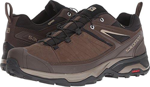 Gtx Trail Hiking Shoes - Salomon Men's X Ultra 3 LTR GTX Hiking Shoe, delicioso/Bungee Cord/Vintage kaki, 10 D US
