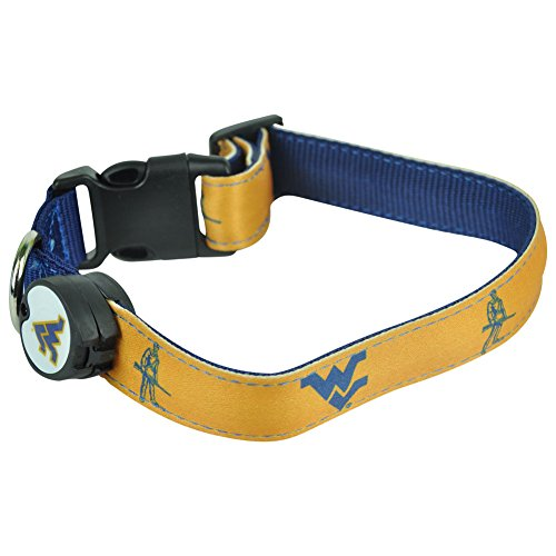 (Dog-E-Glow West Virginia Mountaineers Lighted LED Dog Collar, Large, 15-Inch by 21-Inch)